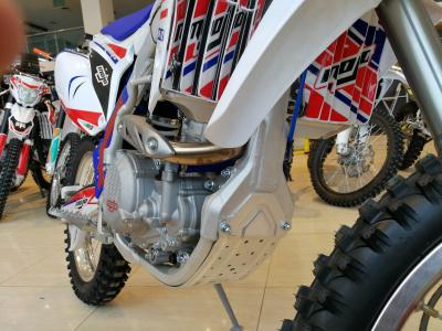 Кроссовый мотоцикл BSE M2 250e 21/18 фото 17