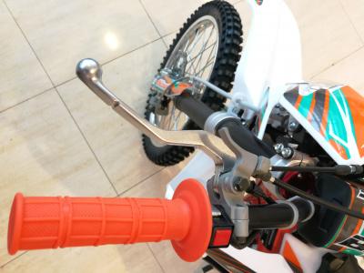 Кроссовый мотоцикл BSE Z6 250e 21/18 фото 15