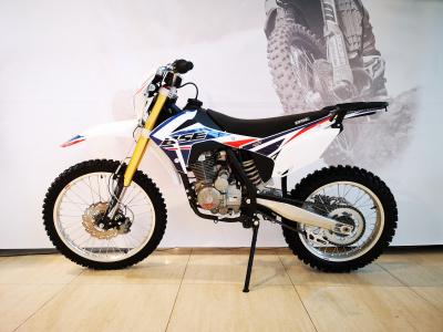 Кроссовый мотоцикл BSE J1-250e 21/18 фото 1