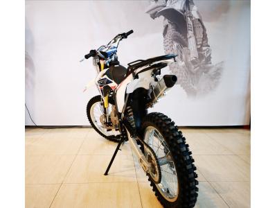 Кроссовый мотоцикл BSE J1-250e 21/18 фото 7