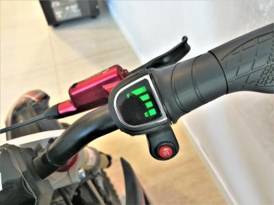 Электрический питбайк BUTCH X1  1.1 kW SE фото 9