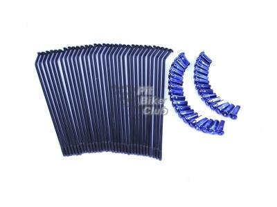 Комплект спиц 12 30 град. черные с синими нипелями фото 1
