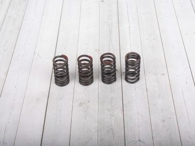Пружины клапанов 4v комлпект фото 1