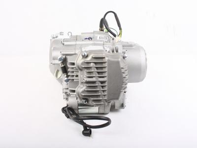 Двигатель Zongshen 190cc E (2 клапана) фото 9