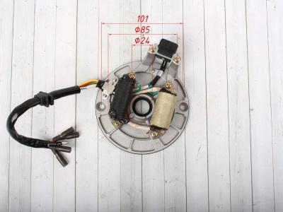 Статор генератора TTR125 (2 катушки) фото 3